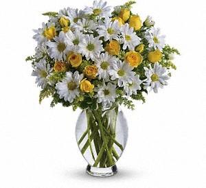 birthday flowers San Fernando Valley   allensflowermarketreseda